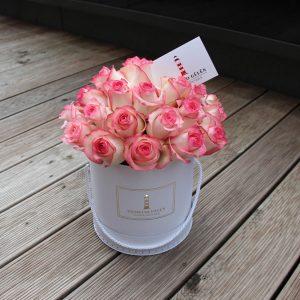 Jumilia rožių dėžutė