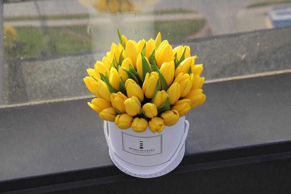 Geltonų tulpių dėžutė