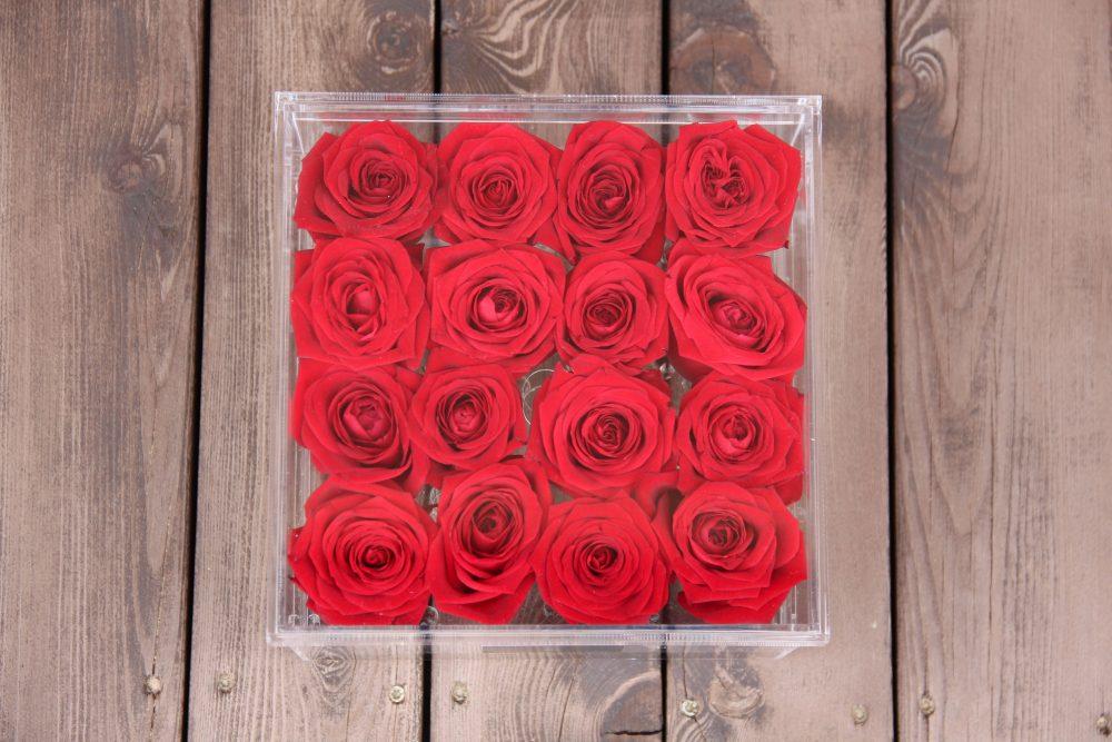 raudonos miegancios rozes